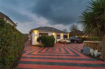 Detached Bungalow for sale in Blackbrook Lane, Bromley...