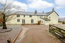 6 bedroom semi detached property for sale in Holsworthy, Holsworthy...