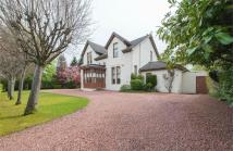 4 bed Detached home for sale in Corsebar Road, Paisley...