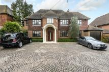 Beech Hill Detached house for sale