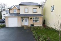 4 bed Detached house in Llys Y Dderwen, New Quay...