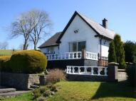 Detached Bungalow for sale in Llanbedr Dyffryn Clwyd...