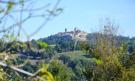 Gualdo view