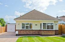 Detached Bungalow in Westbourne Grove...