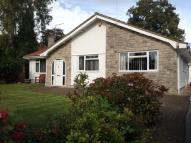3 bedroom Detached Bungalow in PRINGLES CLOSE, FERNDOWN...