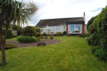Bungalow in Lane, Chelston, Torquay
