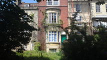 1 bedroom Flat in Ashley Road, Montpelier