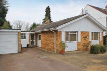 Detached Bungalow to rent in Meadow Road, Claygate...