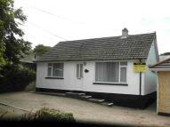 Bungalow to rent in Treswithian, Camborne