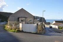 2 bed Bungalow to rent in Porthtowan, Sandy Lane