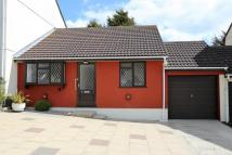 2 bed Bungalow to rent in Falmouth, Daveys Close