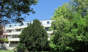 Apartment building and garden