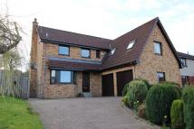 4 bedroom Detached home for sale in 27 Braehead Park...