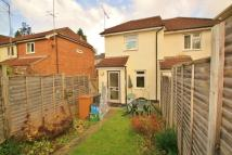 semi detached home in Hadham Road