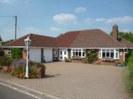 Detached Bungalow for sale in Lynton, Pave Lane...