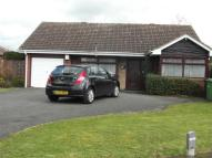 Bungalow to rent in Milby Drive...