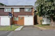 3 bedroom semi detached house to rent in McCarthy Way...
