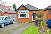 Detached Bungalow to rent in London Road, Wokingham, ...