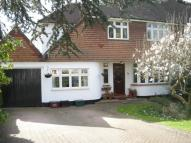 semi detached house in The Grove, Sidcup, Kent