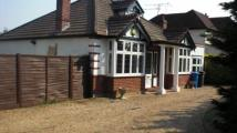 Detached home to rent in Snapper, Holyport Road...