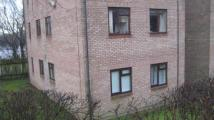 1 bedroom Flat to rent in William Morris Drive...