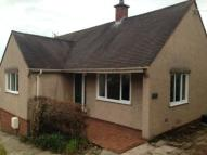 2 bed Bungalow to rent in Oak Drive Close...