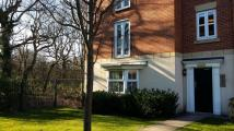 2 bedroom Flat in  Rockford Gardens...