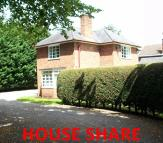 Powell Road House Share
