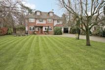 7 bedroom Detached house for sale in The Avenue, Ickenham