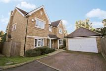 Detached property in Walnut Tree Close...