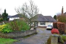 Bungalow to rent in Welford Road, Wigston...