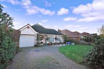 3 bed Detached Bungalow for sale in Winterstoke Crescent...