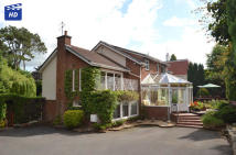 4 bedroom Detached Villa in 86 Longhill Avenue...