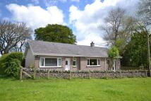 Detached Bungalow in Primrosebank Cottage Nr...