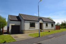 Detached Bungalow in 2 Nursery Square...