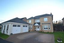 4 bedroom Detached Villa for sale in 3 Doonvale Place...
