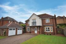 20 Highpark Road Detached Villa for sale
