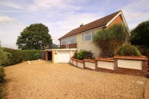 2 bedroom Detached Bungalow in North Hill, Little Baddow