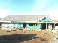 4 bed new development for sale in Plot 3 Rosedale Gardens...