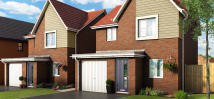 3 bedroom new property in Sunflower Close...