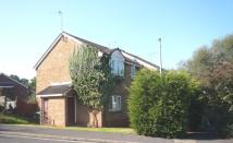 Springford Gardens semi detached property to rent