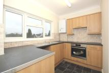 Beaulieu Road Flat to rent