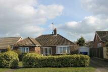 Detached Bungalow for sale in Loftus Avenue, Reydon