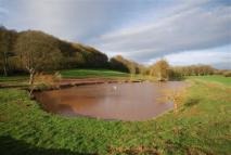 Land in Ross On Wye for sale