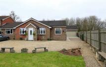 4 bedroom Detached Bungalow in Woodfield Road, Ledbury...