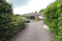 Detached Bungalow for sale in Wymondley Road, Hitchin...
