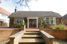Bungalow to rent in Oxford Road, Birkdale...