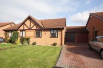 Bungalow to rent in Moor Close, Ainsdale...
