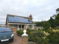 Detached Bungalow for sale in Ellisland, Marton...