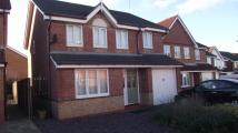 4 bed Detached house in Tarragon Drive...